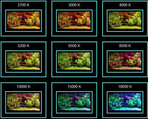 цветовое освещение для аквариума