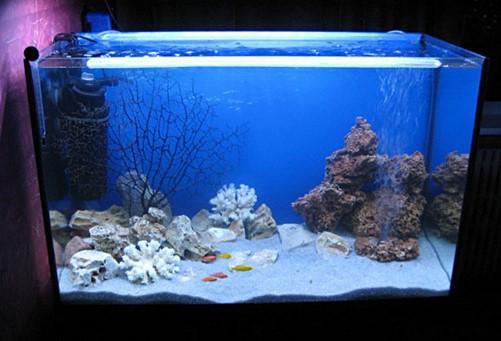 светодиодная лента аквариум
