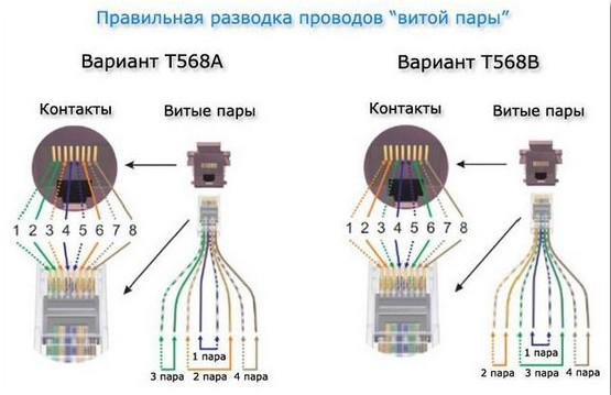 Разводка проводов витой пары