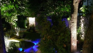 Фибероптика – чудо света в вашем саду